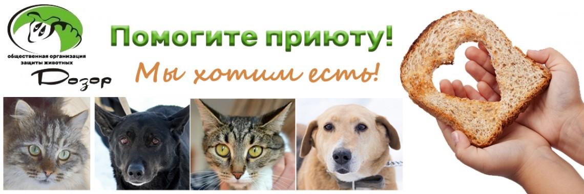 help animals2