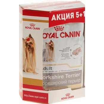 АКЦИЯ! (набор 5+1) Royal Сanin Yorkshire Terrier Adult (паштет), пауч для собак, 85 г