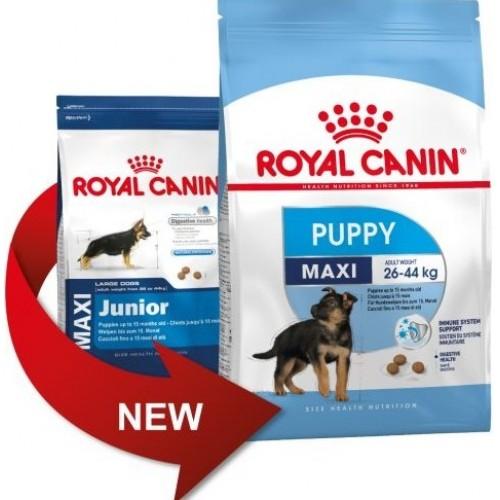 royal canin puppy maxi junior